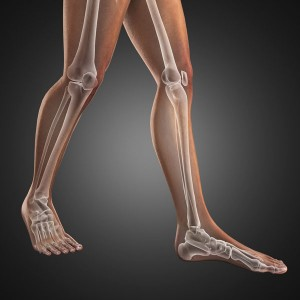 pronation-walking-leg-skeleton